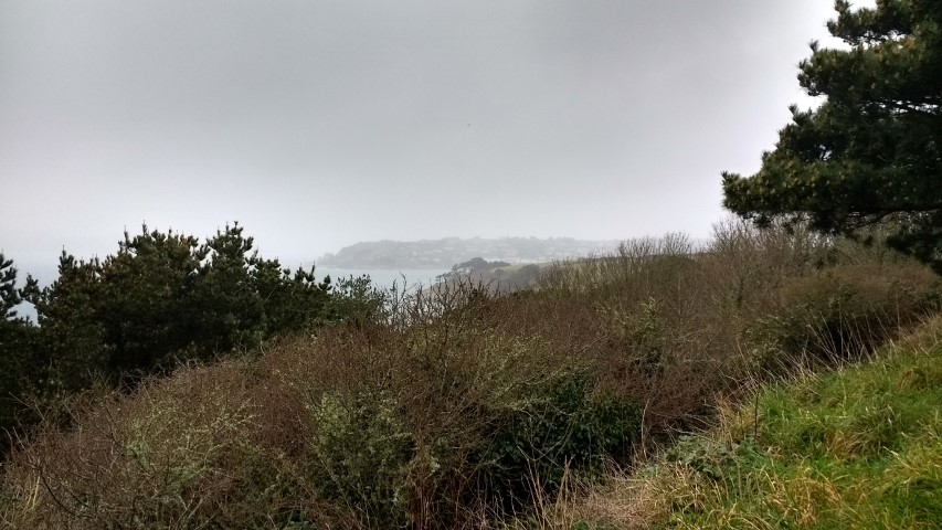 The port of Falmouth from Roseland head.